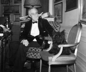 President Franklin D. Roosevelt is shown with Fala in this White House photo taken on December 21, 1941. Image Credit: U.S. National Archives